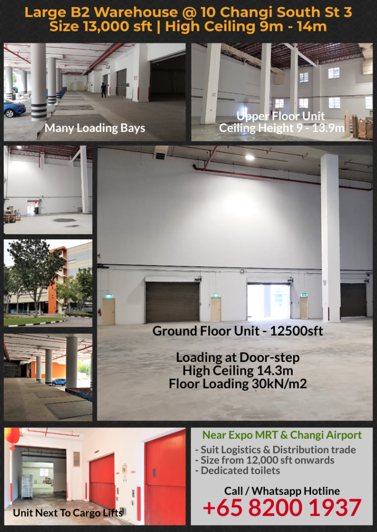large warehouse for rent 10 changi south st 3
